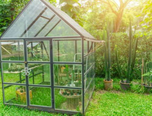6 Greenhouse Heating Tips